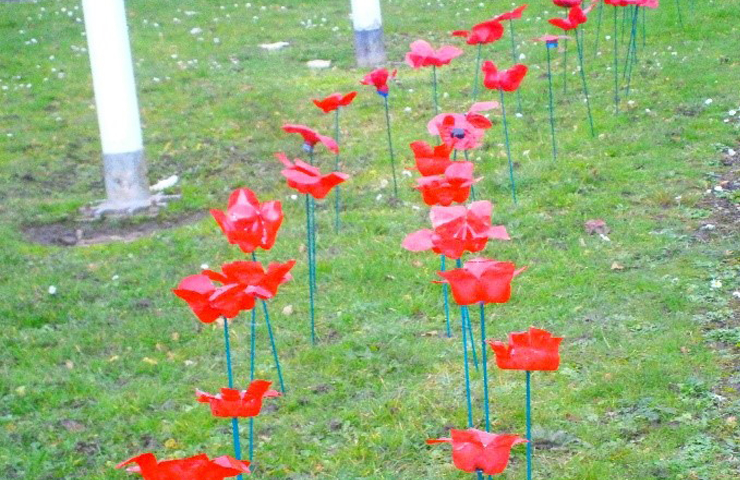 Creating poppies for Remembrance